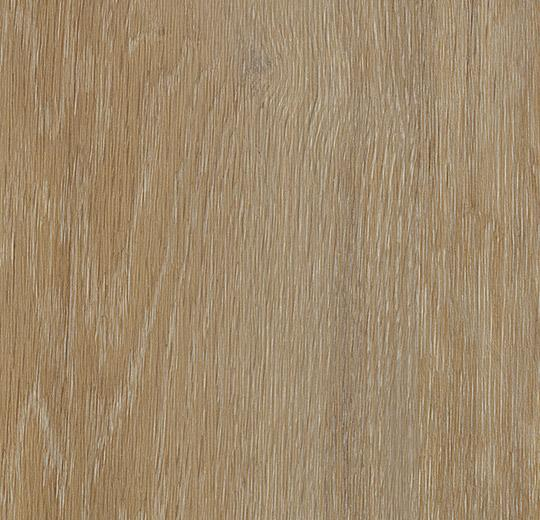 Pavimento LVT Forbo Golden oak
