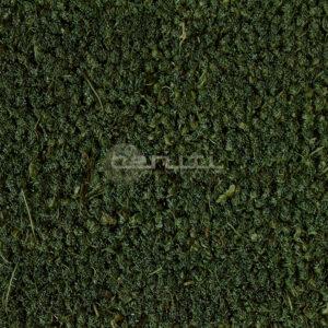 zerbino-cocco-verde-vendita-al-taglio